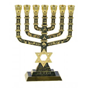 Star of David and Jerusalem Seven Branch Menorah - Dark Green