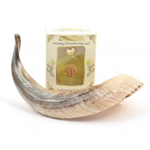 Anointing Ram's Horn Shofar + Galilee Anointing Oil Frankincense and Myrrh